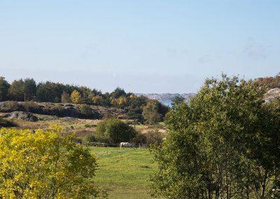 Hagens Ridcenter ligger nära havet