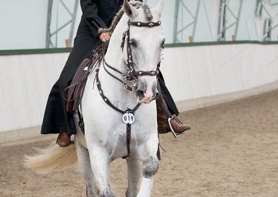 Johanna Xadres uppvisning portugisiskt 2014